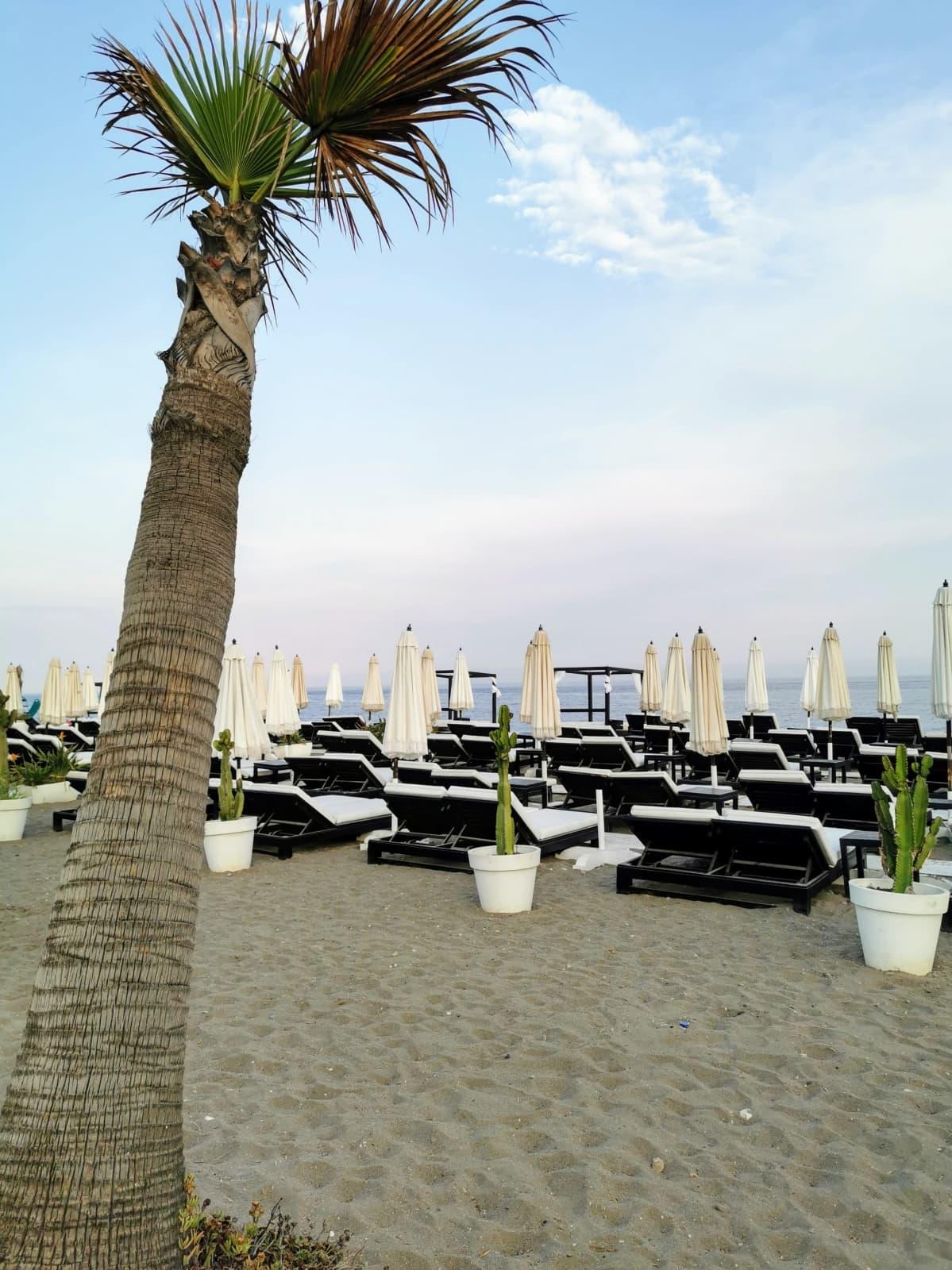 Kuvassa palmuja ja rantatuoleja hiekkarannalla Espanjassa.