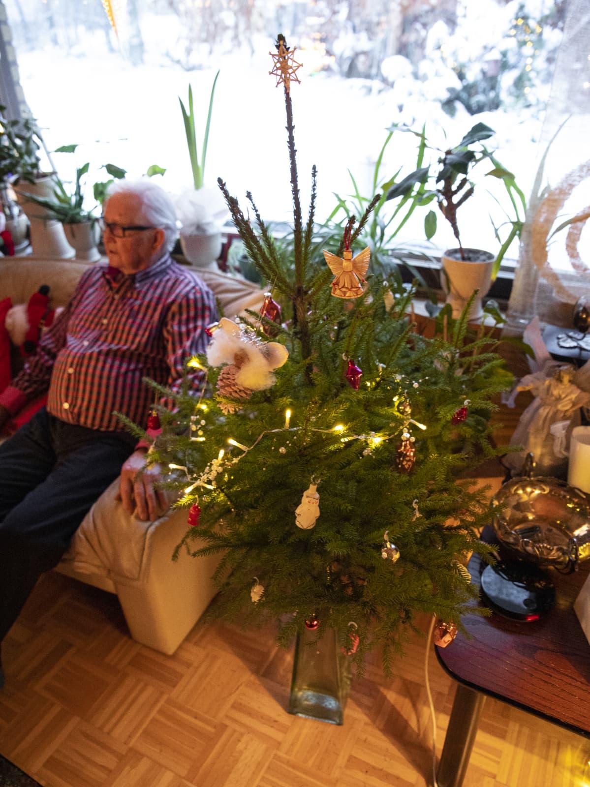Joulukuusi Leena Kaijansinkon kotona.