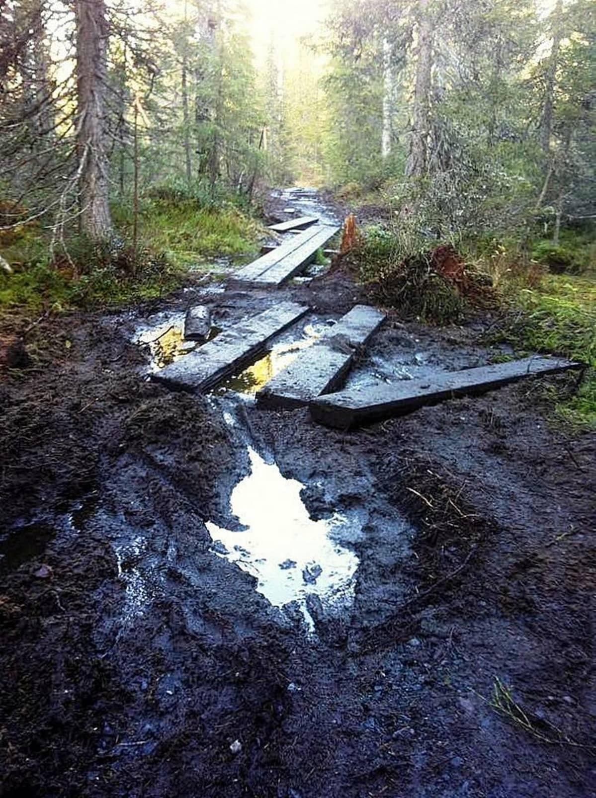 Runsaat sateet ovat saaneet Syötteen kansallispuiston reitit paikoin huonoon kuntoon.
