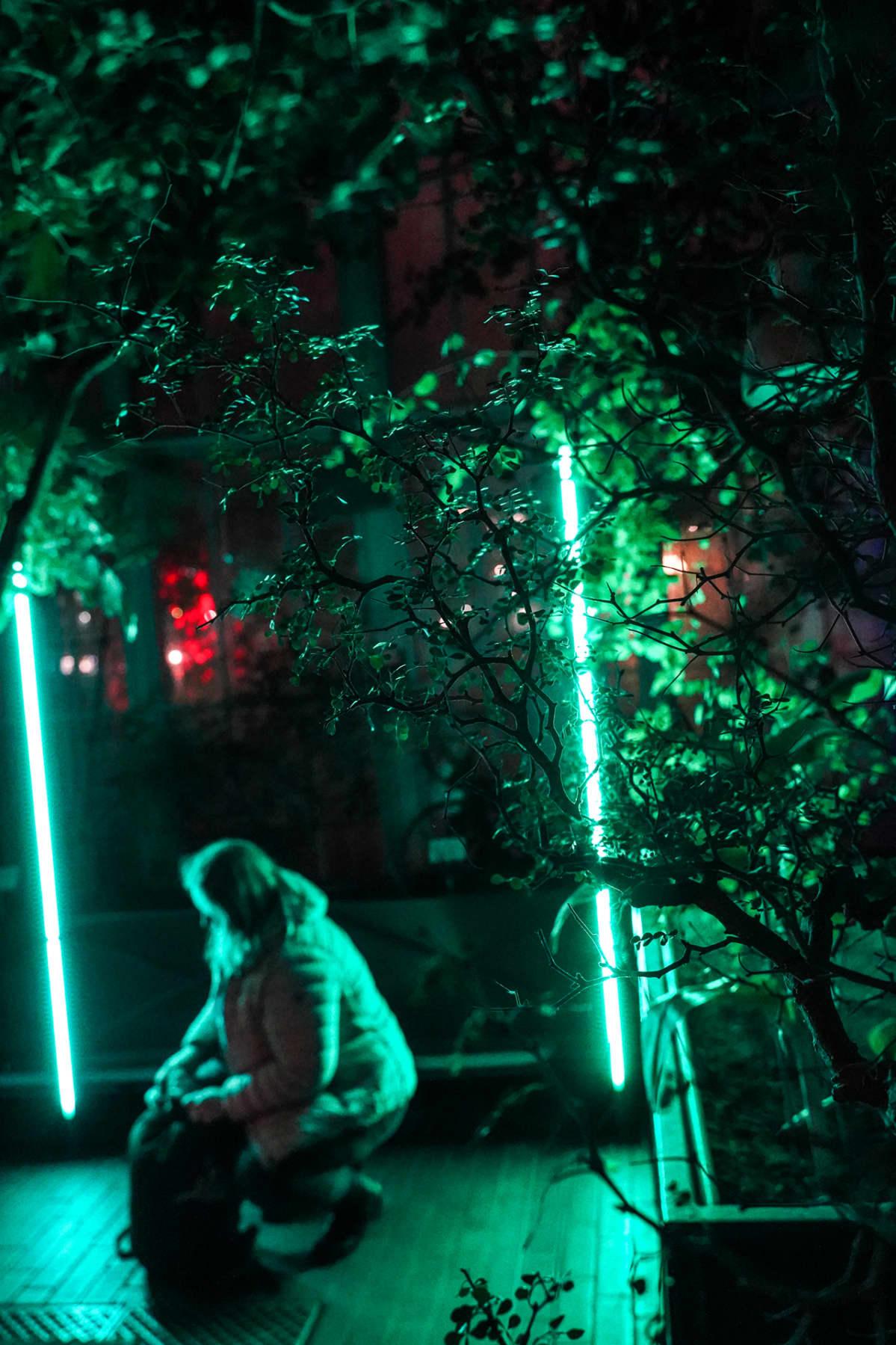 Music for Plants, Kaisaniemen kasvitieteellinen puutarha
