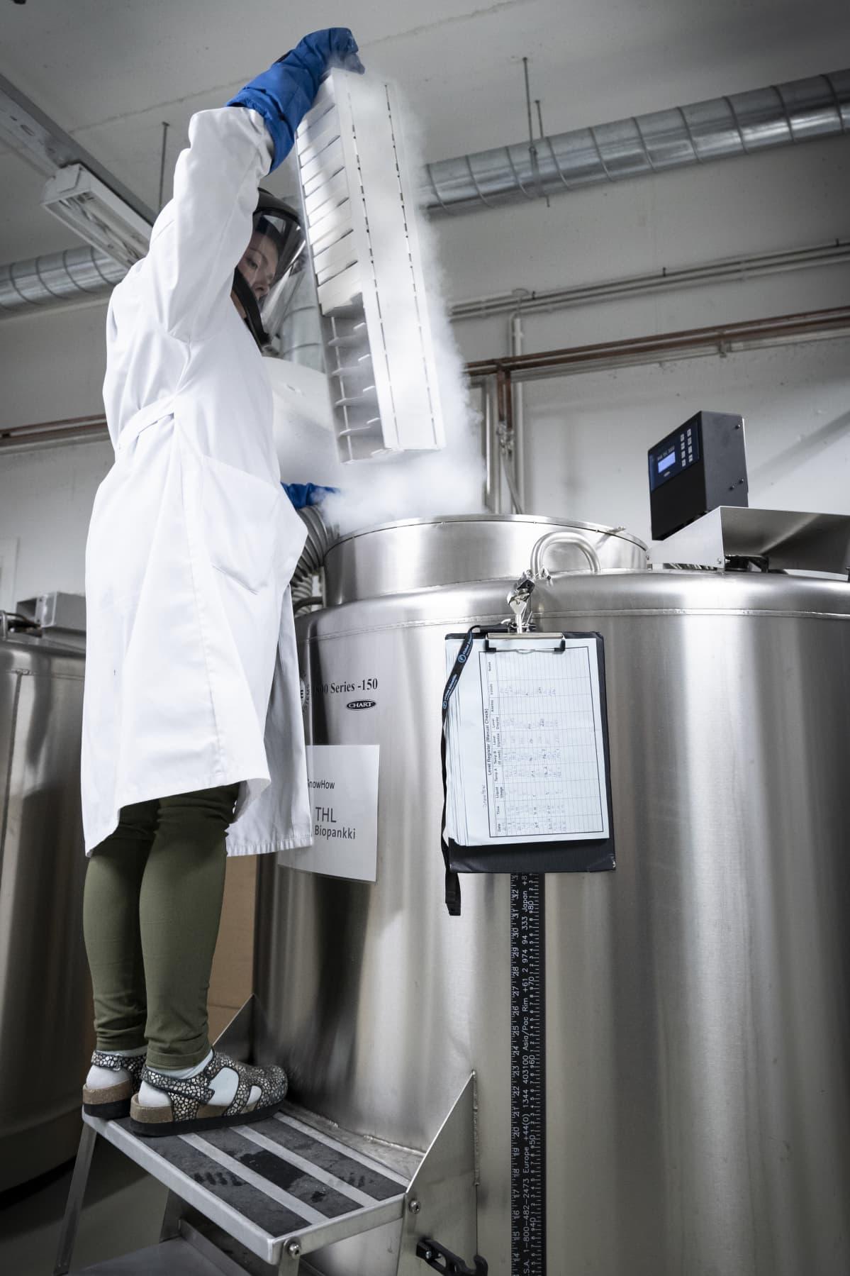 Biomeducumin syväjäädytyssäiliöstä otetaan näytetorni ulos.