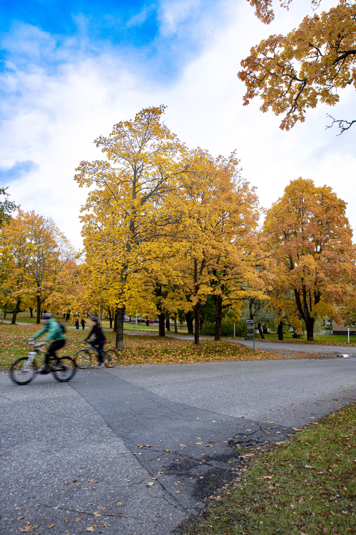 Pyöräilijöitä Lappeenrannan Rakuunamäellä.
