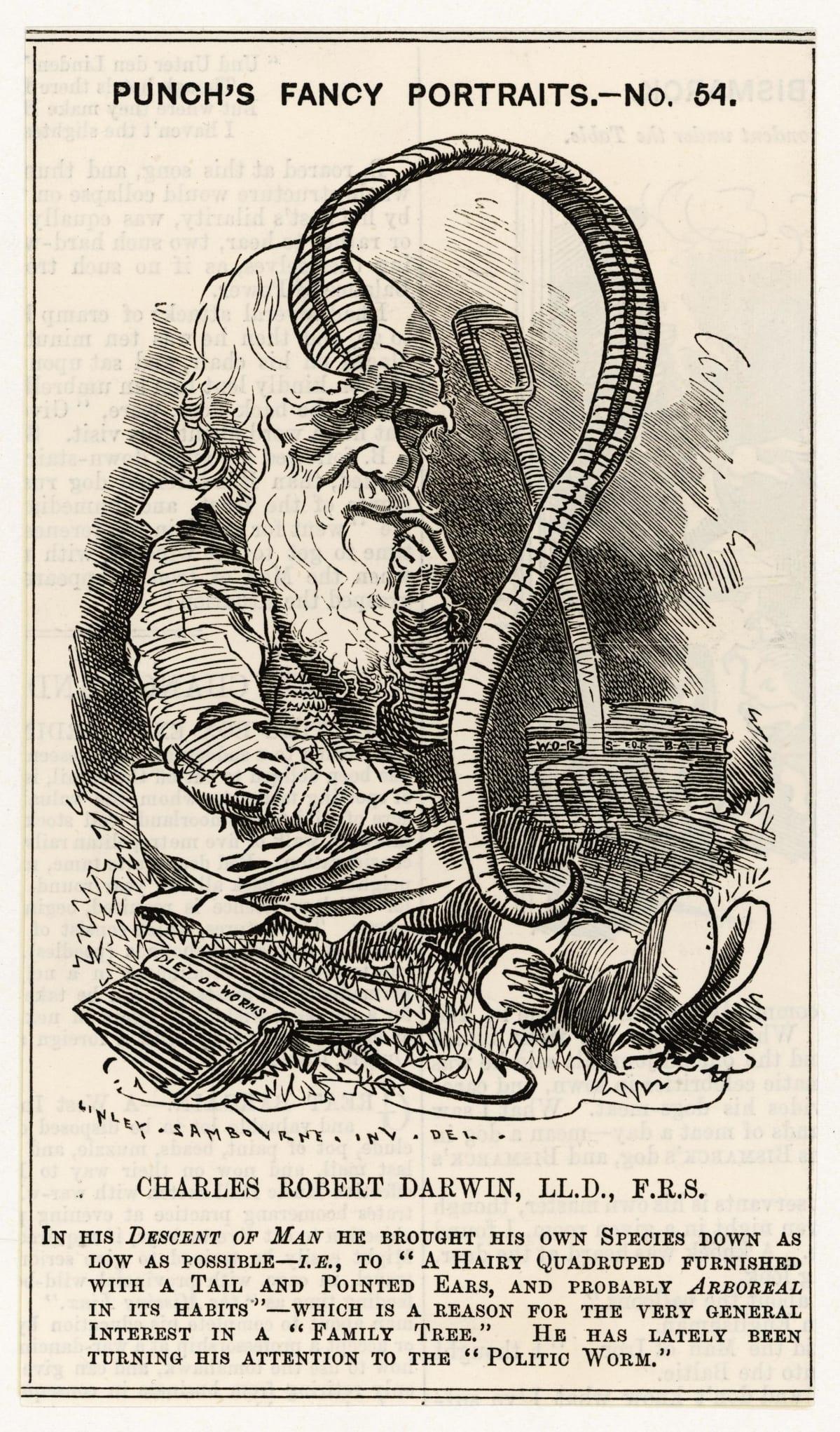 Pilakuva Charles Darwinista