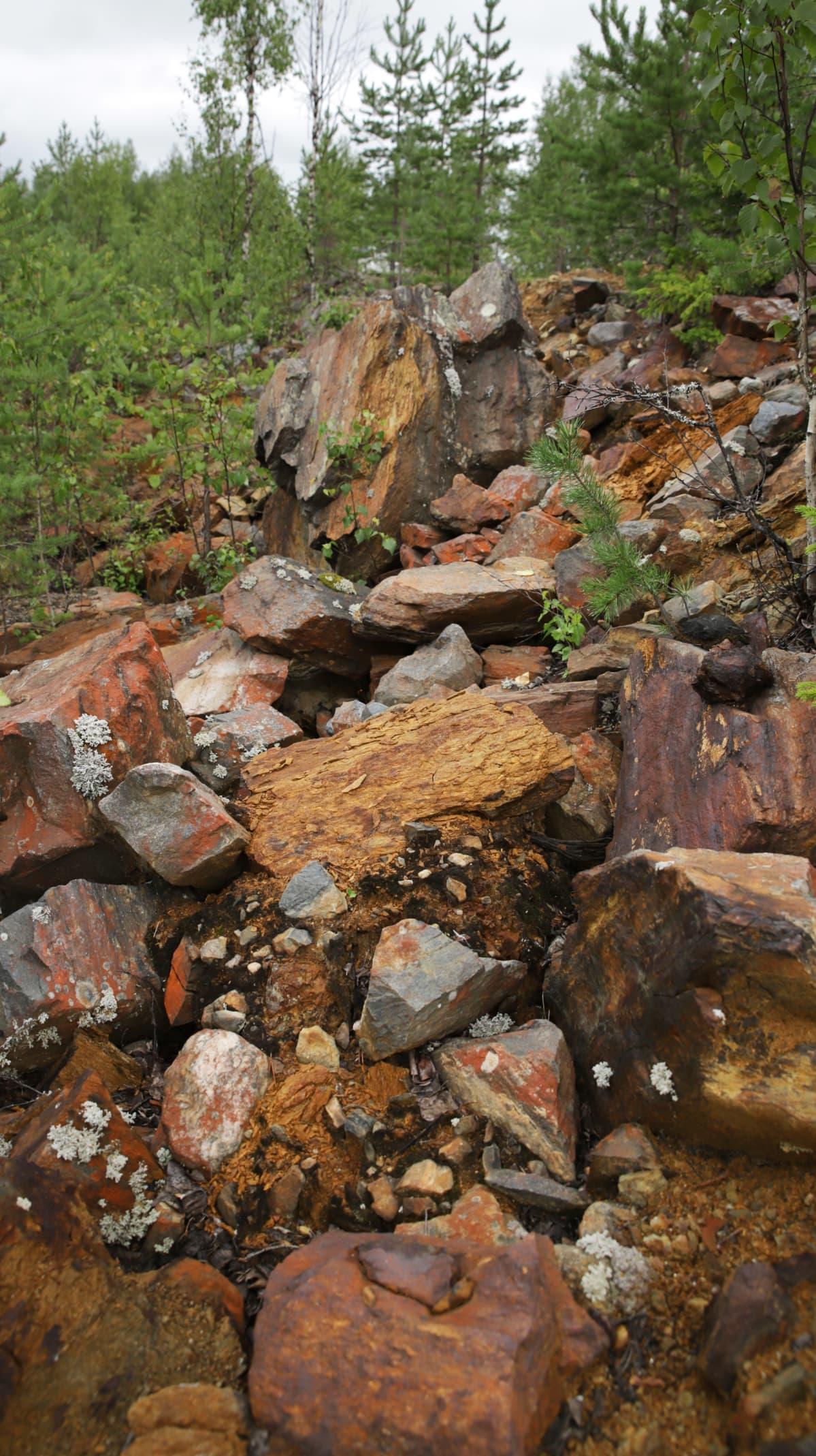 Kaivoksen sivukivikasa