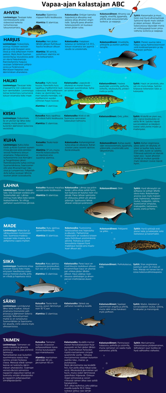Vapaa-ajan kalastajan ABC - kymmenen yleistä kalalajia.