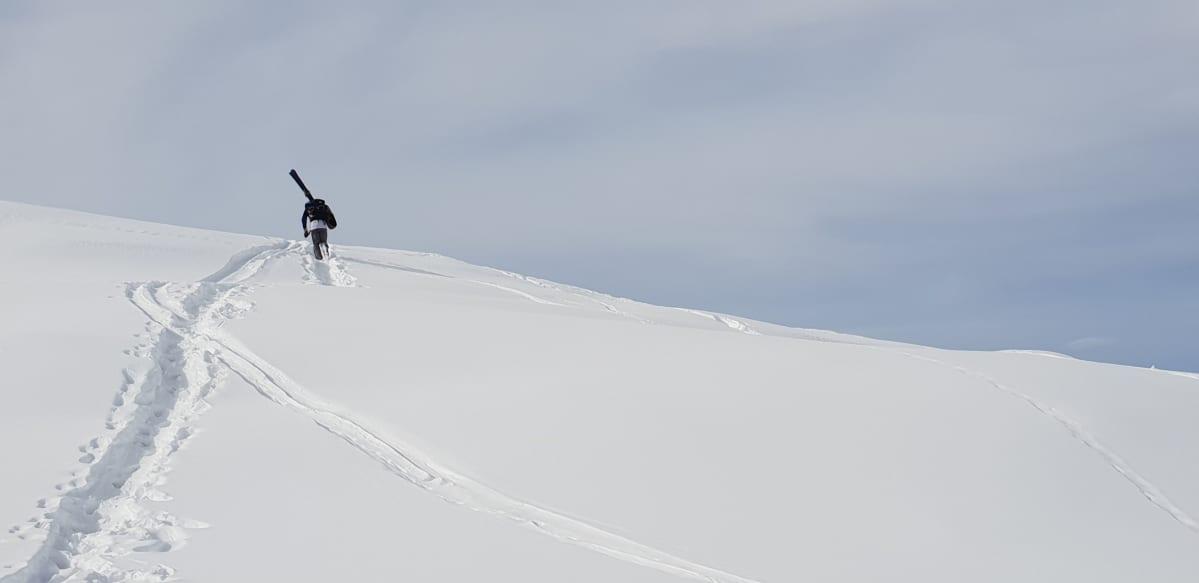 Hiihtäjä sukset olkapäällä syvässä lumessa.