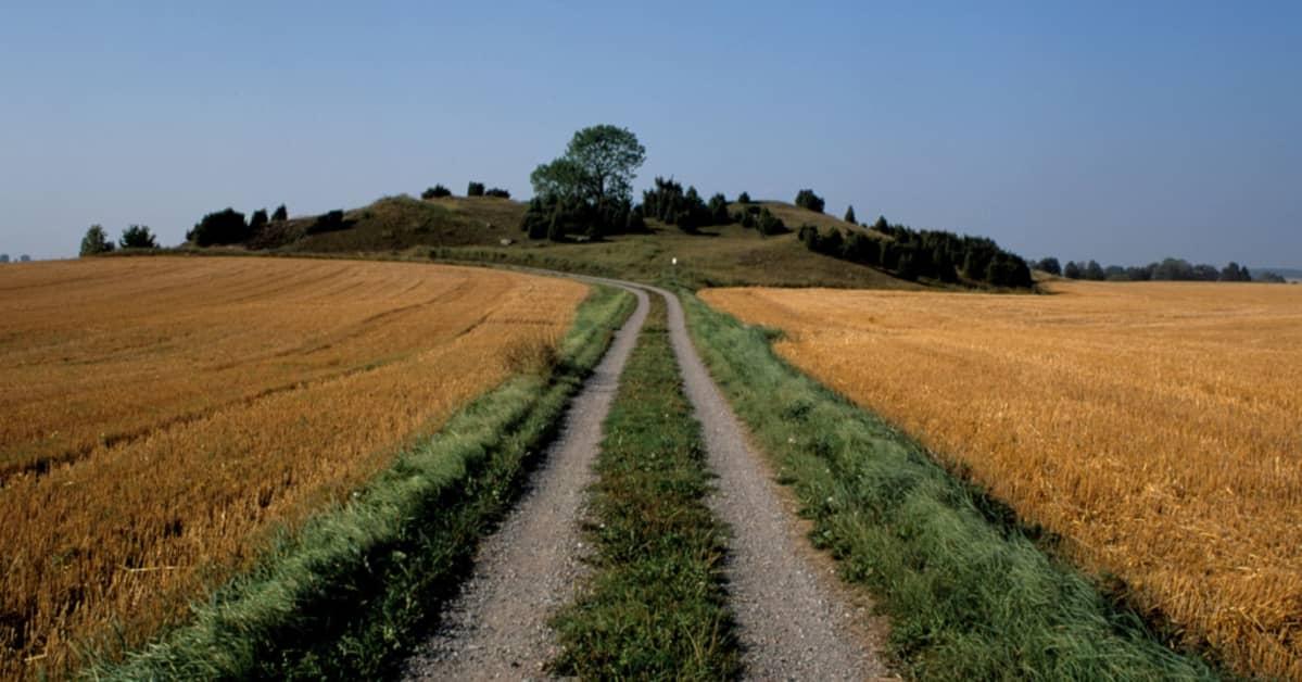 Kumpu ja sille pellon poiki johtava maantie.