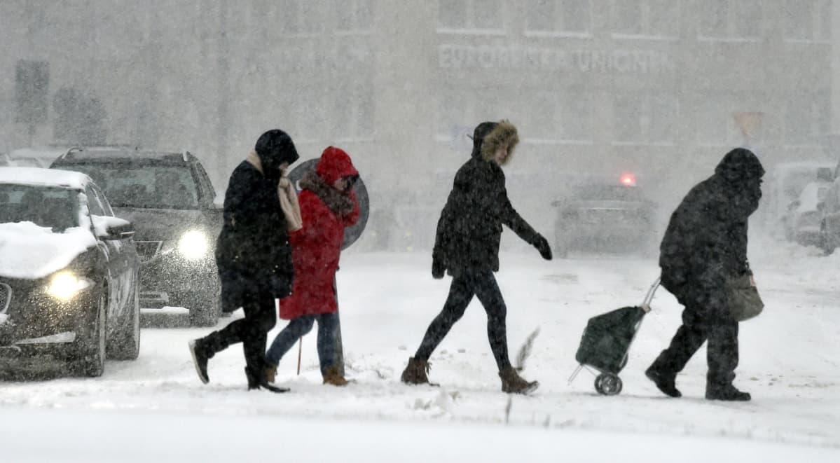 Lunta pyryttää Helsingin keskustassa 1. helmikuuta