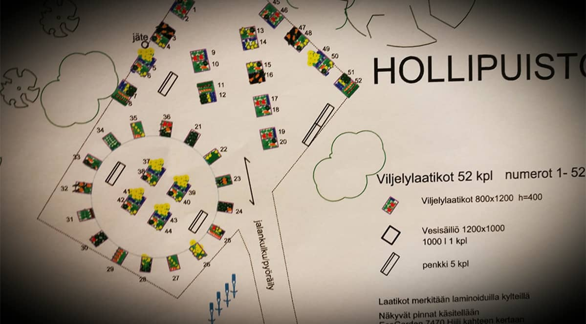Suurin osa Oulun juhlavuoden 2017 kunniaksi perustettavista viljelylaatikoista tulee Hollihaan puistoon.