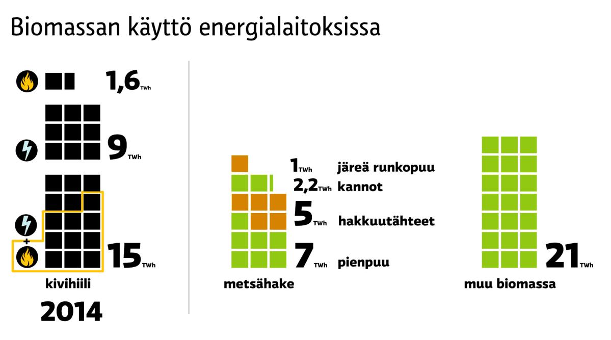 Biomassan käyttö energialaitoksissa