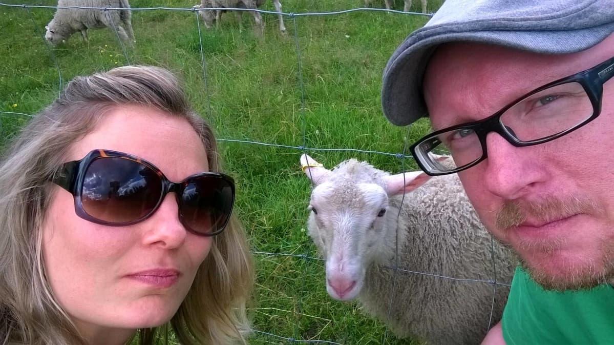 Elina Kinos, Mikko Maasola sekä lampaita.