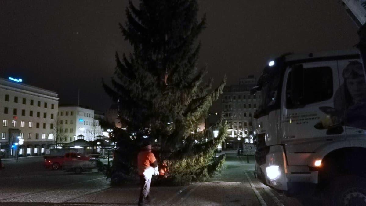 Aamuyöstä tuotu joulukuusi  2018 Hämeenlinnan torille