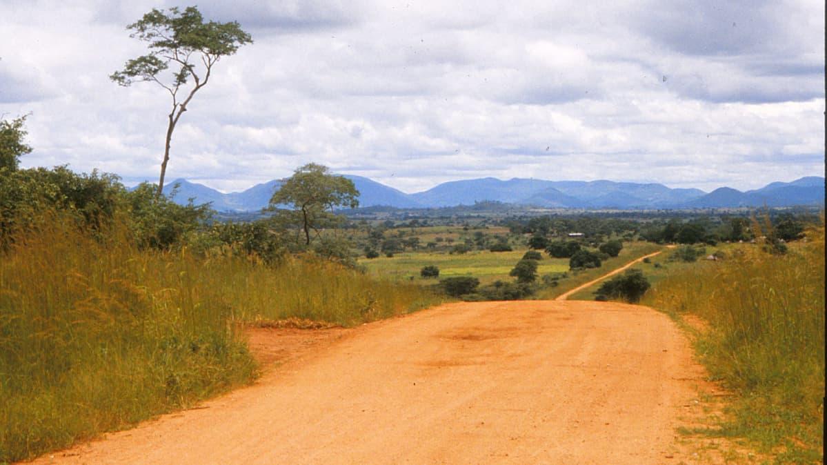 Savannia Sambiassa