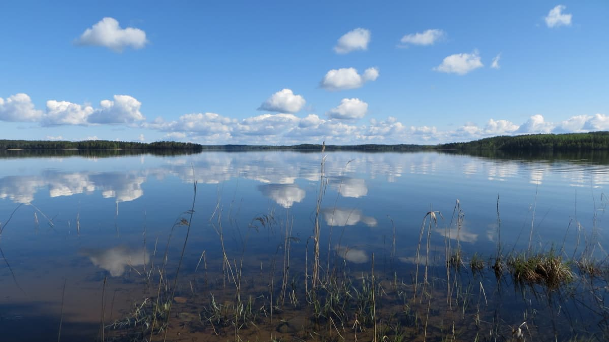 Puruveden maisemaa Punkaharjun länsipäässä.