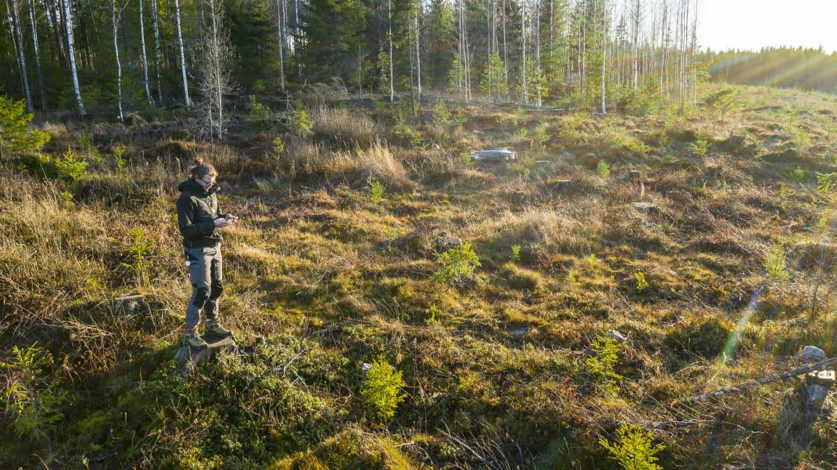 dronen lennättäjä lennättää dronea metsä aukealla