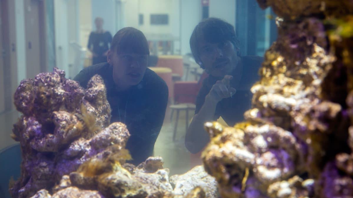 Jos akvaarion lasia tutkisi mikroskoopilla, näkisi kokonaisen eliöiden maailman, Markus Dernjatin kertoo.