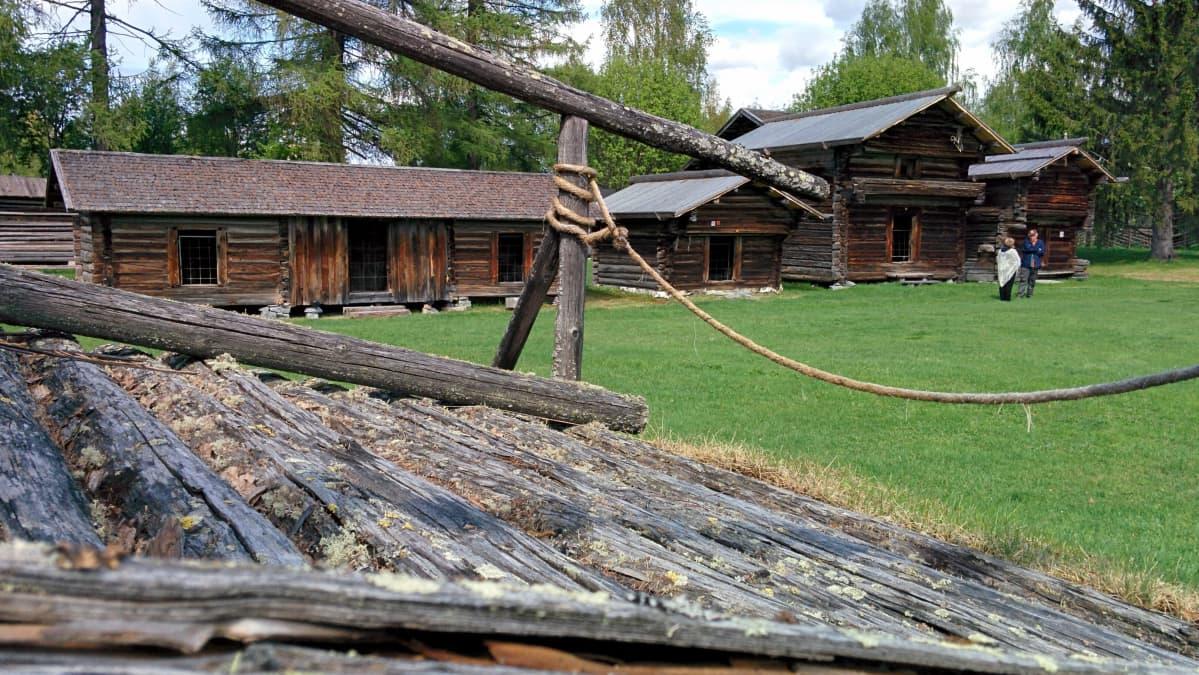 Pielisen museon pihapiiriä Lieksassa.