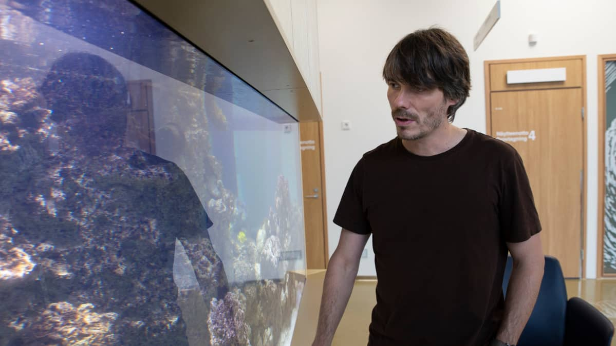 Meri- ja ympäristöbiologi, tutkimussukeltaja, Sealifen intendentti Markus Dernjatin on suunnitellut ja toteuttanut Uuden lastensairaalan akvaarion.