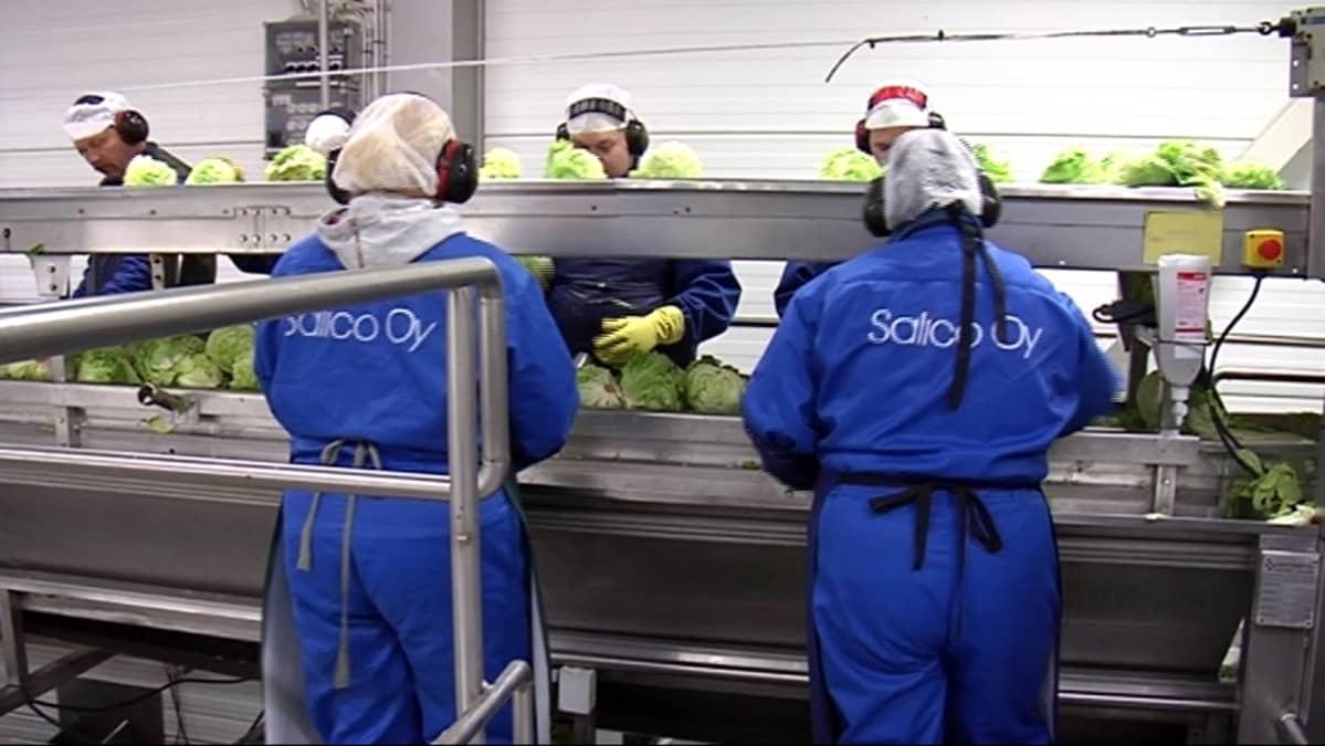 Työntekijät salaattilinjastolla