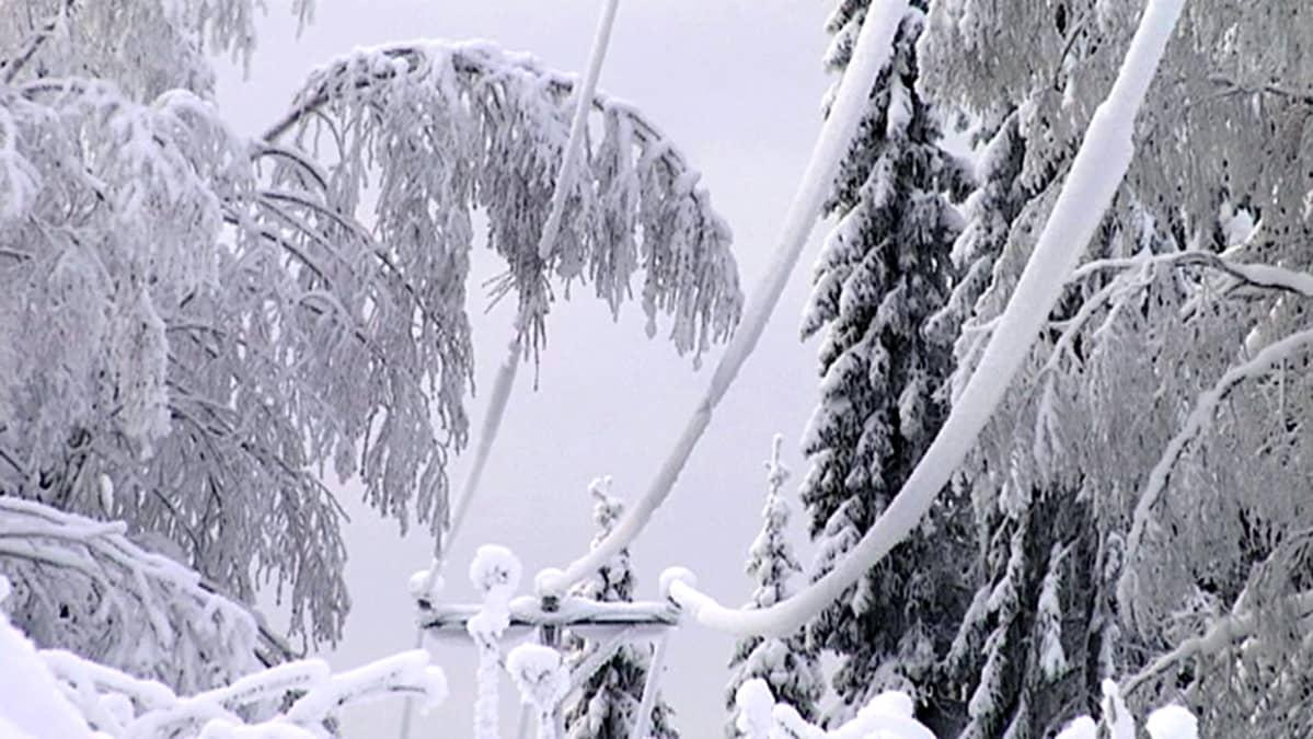 Luminen sähkölija.