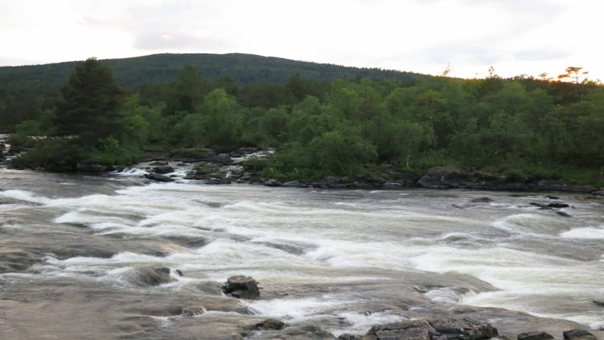 Juutuanjoki