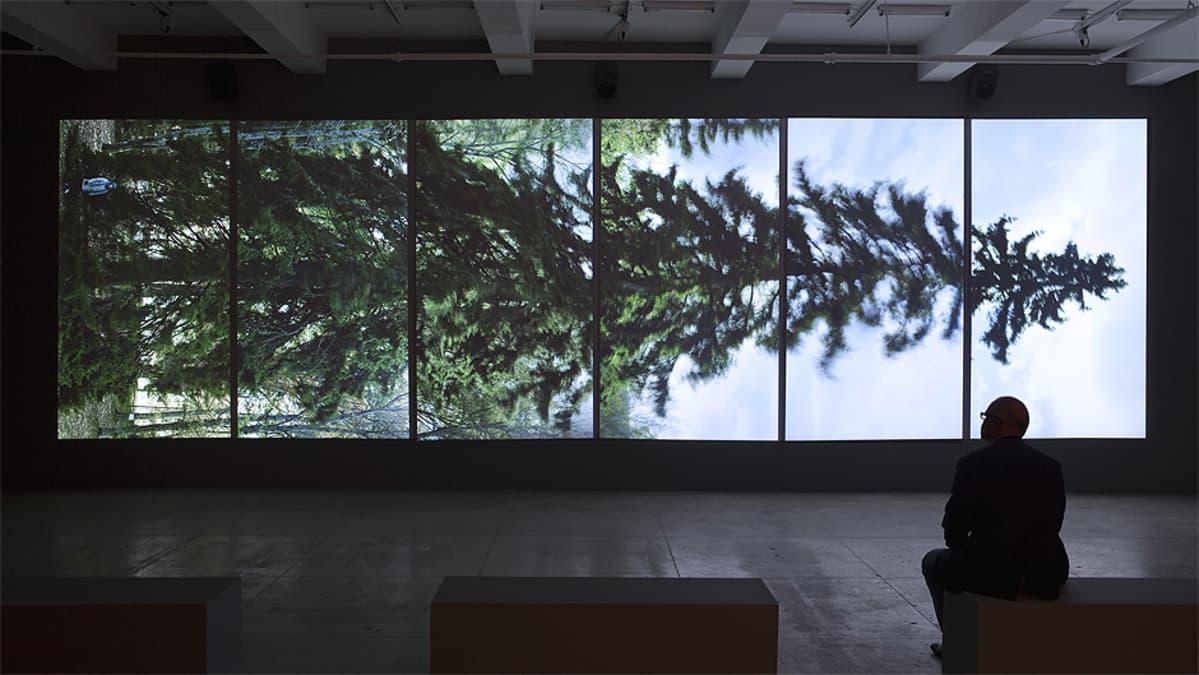 Katsoja seuraamassa Eija-Liisa Ahtilan Horizontal-videoinstallaatiota.