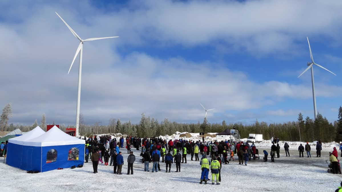 Yleisöä Tervolan Varevaaran tuulipuiston avajaisissa, taustalla tuulimyllyjä