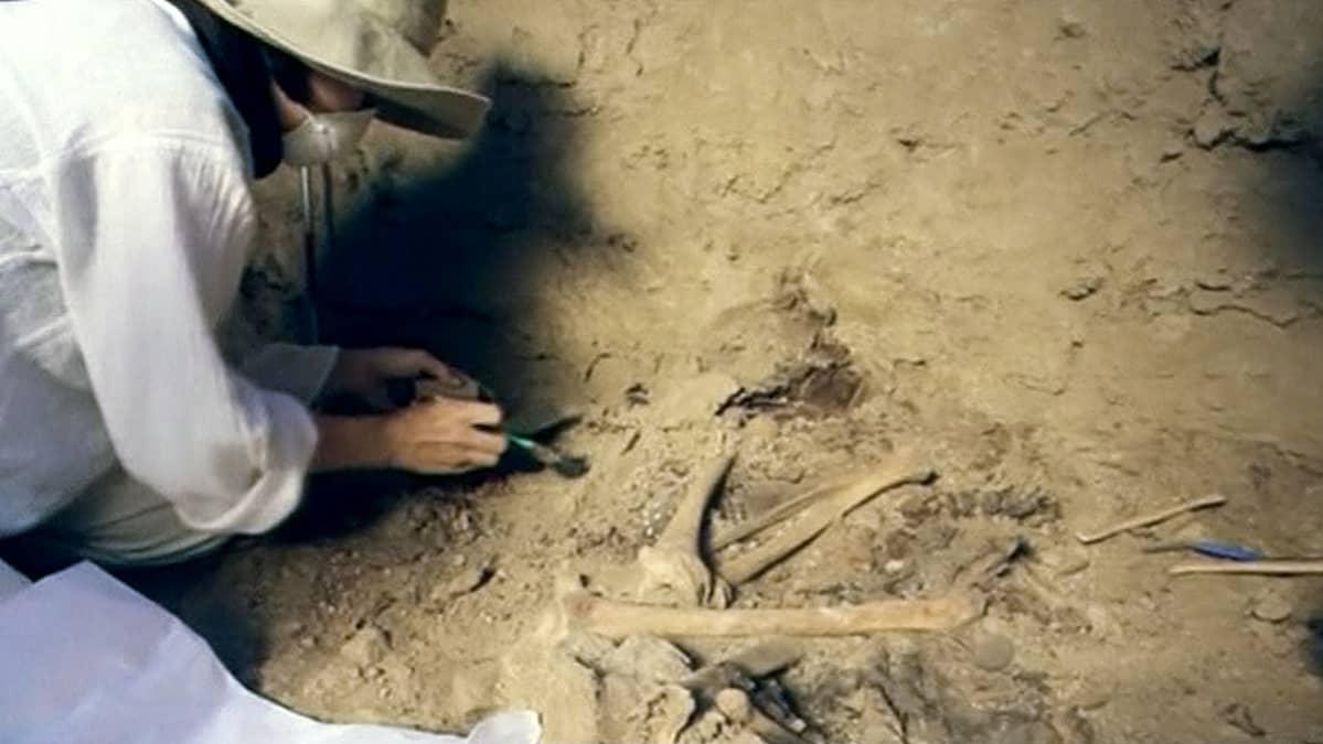 Arkeologi kaivamassa esiin muumioiden jäännöksiä.