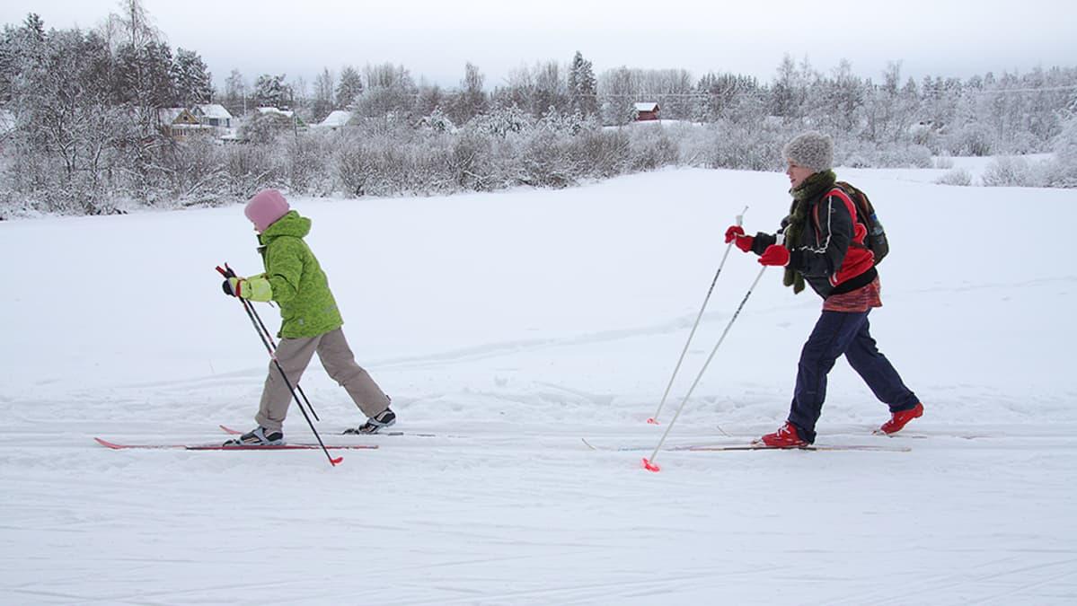 Kaksi hiihtäjää.