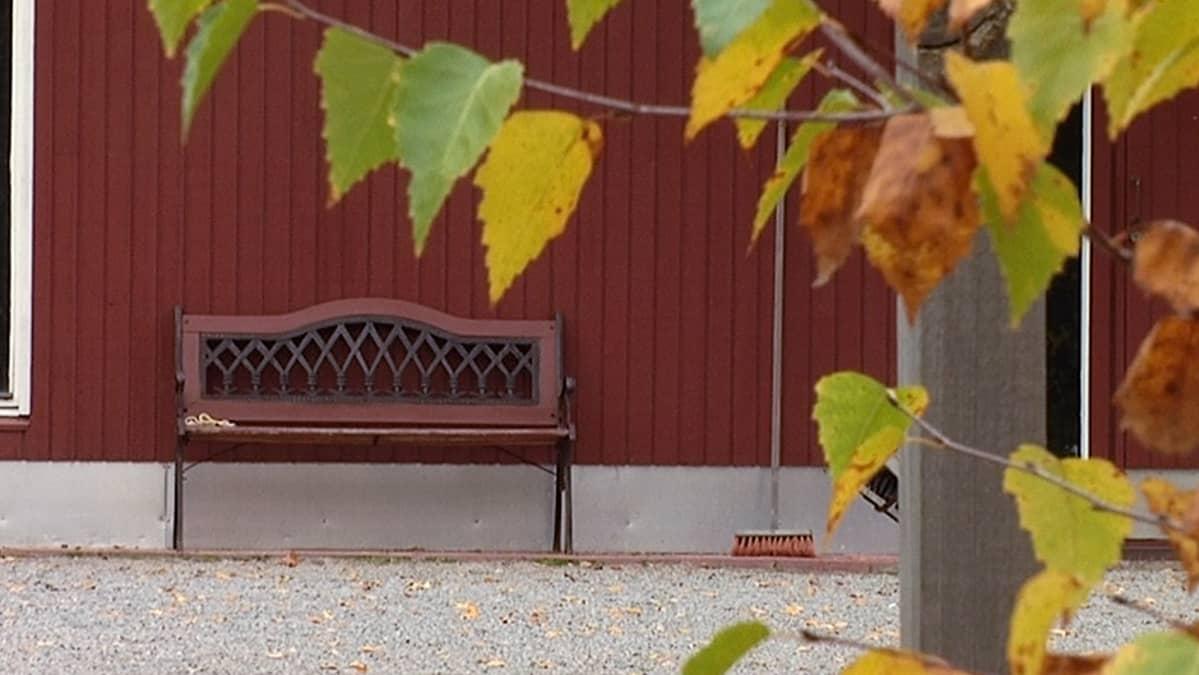 Penkki, jolta vauva löydettiin Salossa 15. lokakuuta.