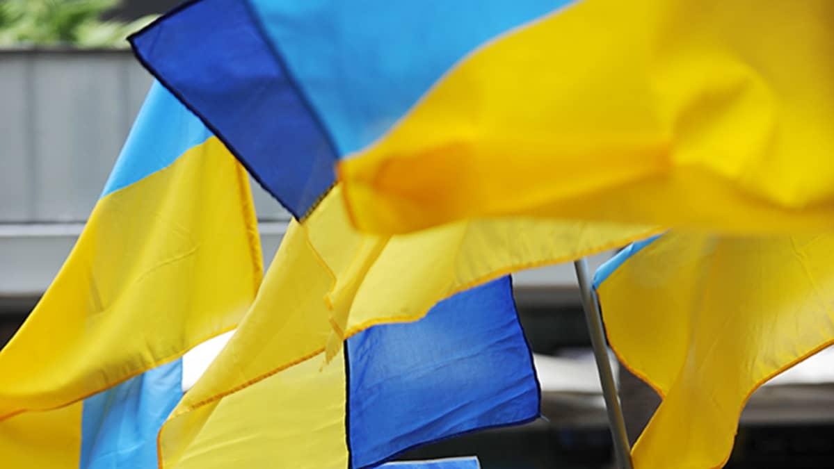 Ukrainan lippuja