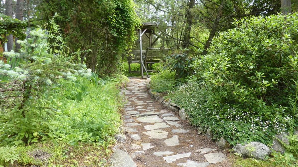 Kivetty käytävä Honkamajan metäspuutarhassa Tammelassa.