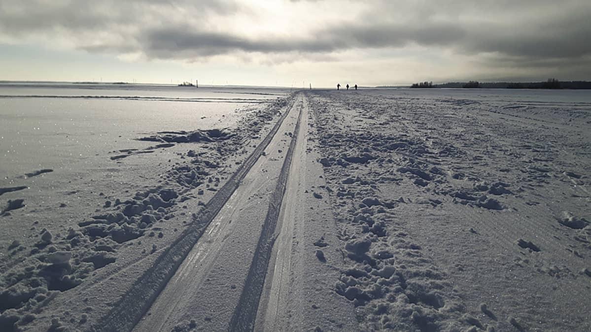 Hiihtolatu meren jäällä.