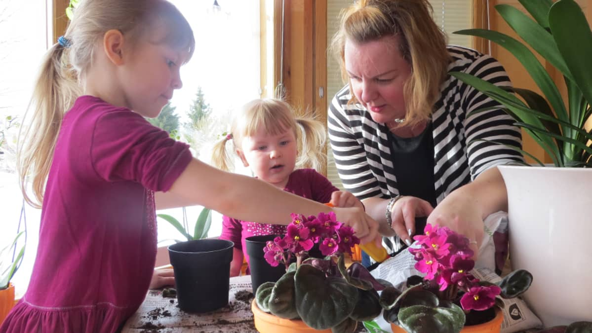 Tiia Nikupeteri lapsiensa kanssa vaihtamassa kukkamultia