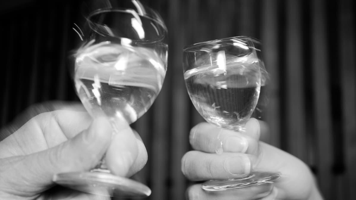 Lähikuvassa kaksi ihmistä skoolaavat juomalaseilla.