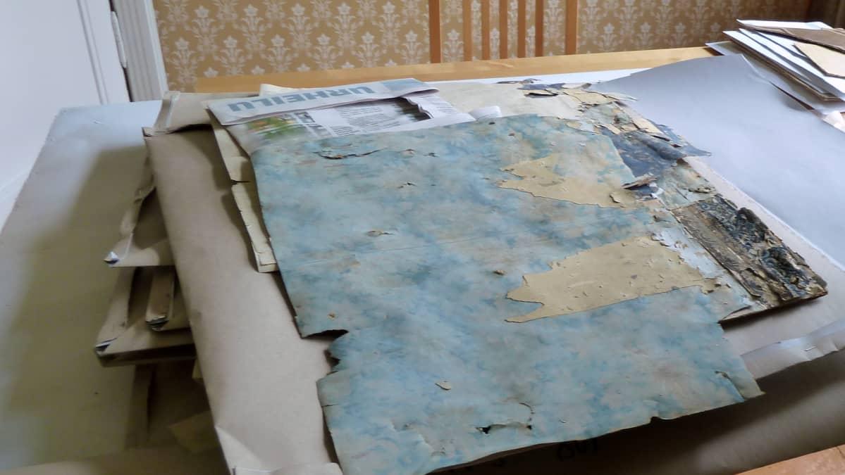 Kotkaniemen lisätutkimusten aikana löydettyjä tapetteja.