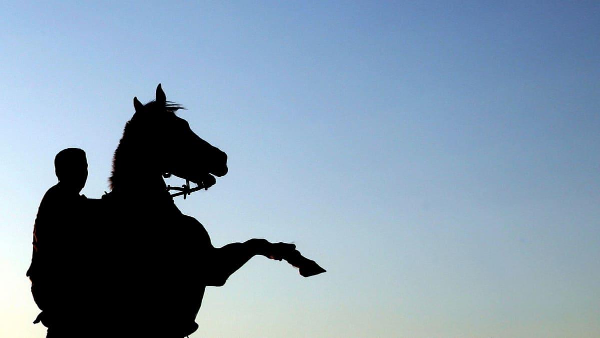 Hevonen nousee pystyyn ratsastaja selässään.