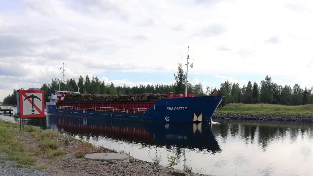 Puutavaraa kuljettava rahtialus RMS Carelie Saimaan kanavassa.