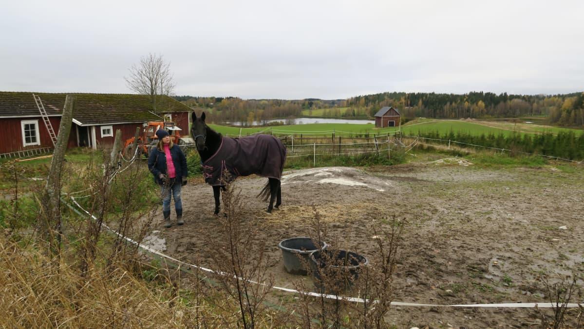 Uudenmaan hevosenomistajien yhdistyksen puheenjohtaja Birgitta Mangström hevosensa kanssa.