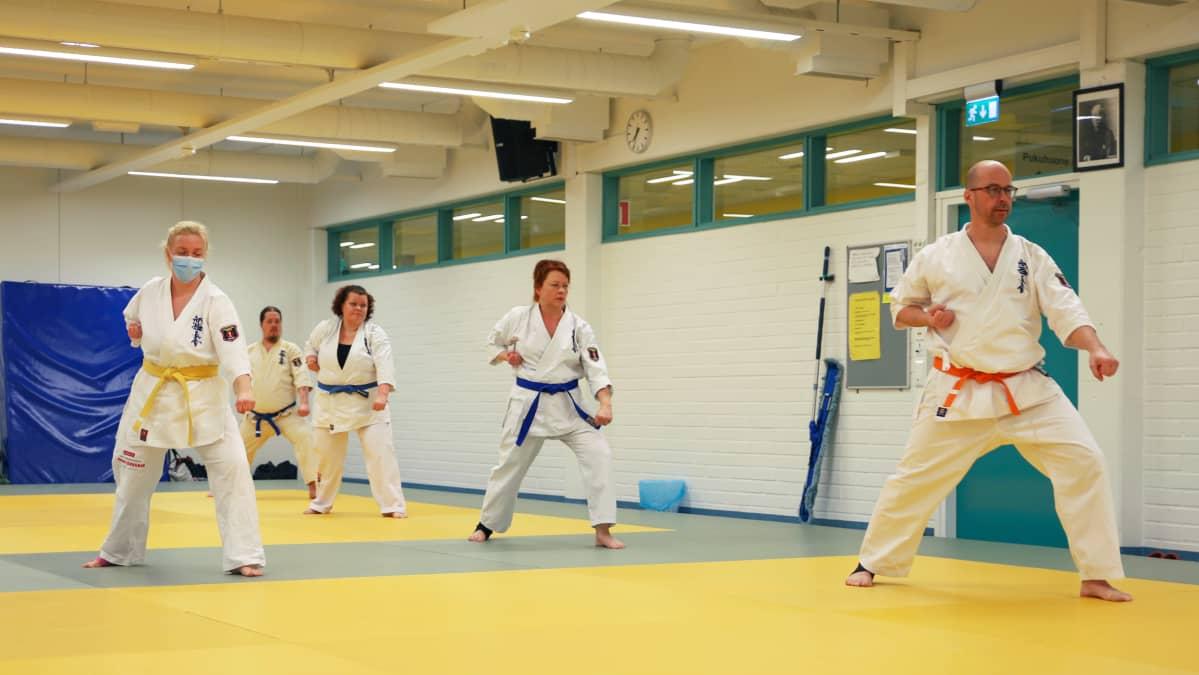 Karateharjoitukset Putaan hallilla Torniossa