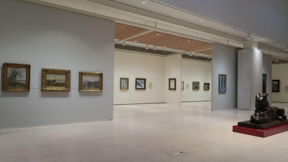 Taidemuseo ja maalauksia