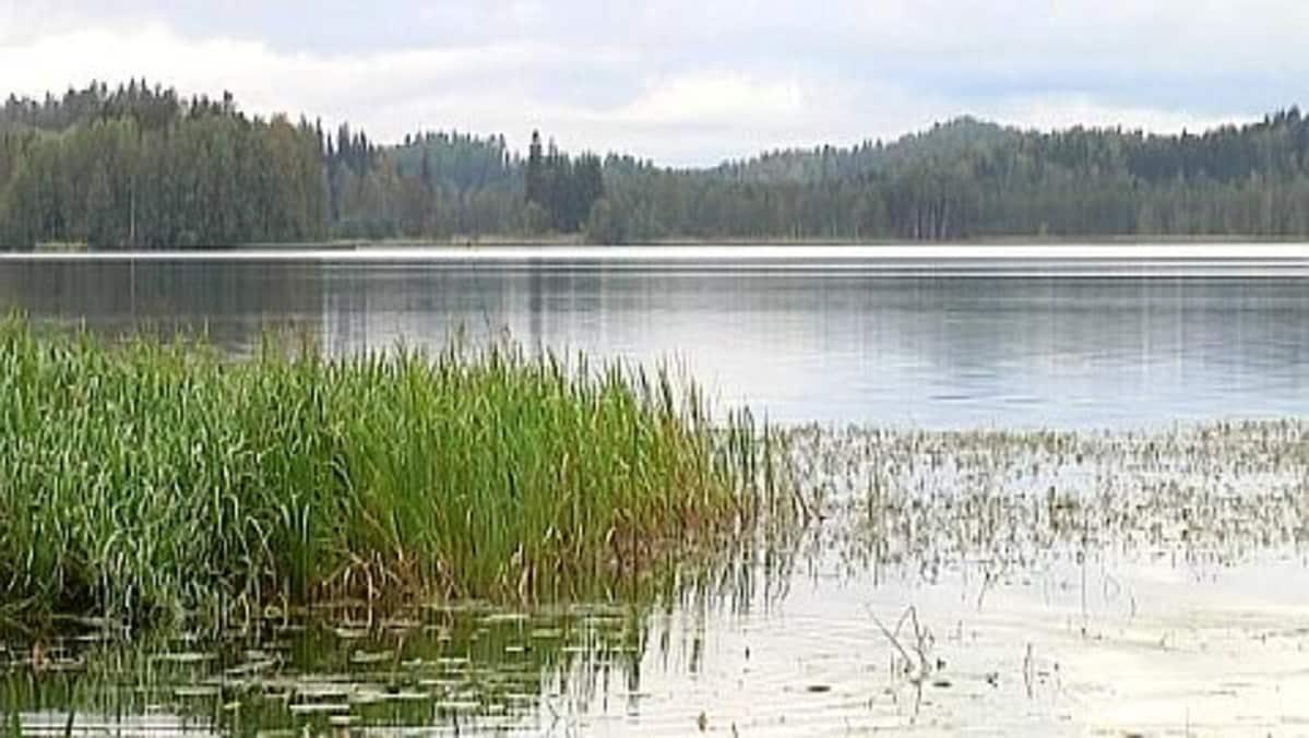 Kernaalanjärvi