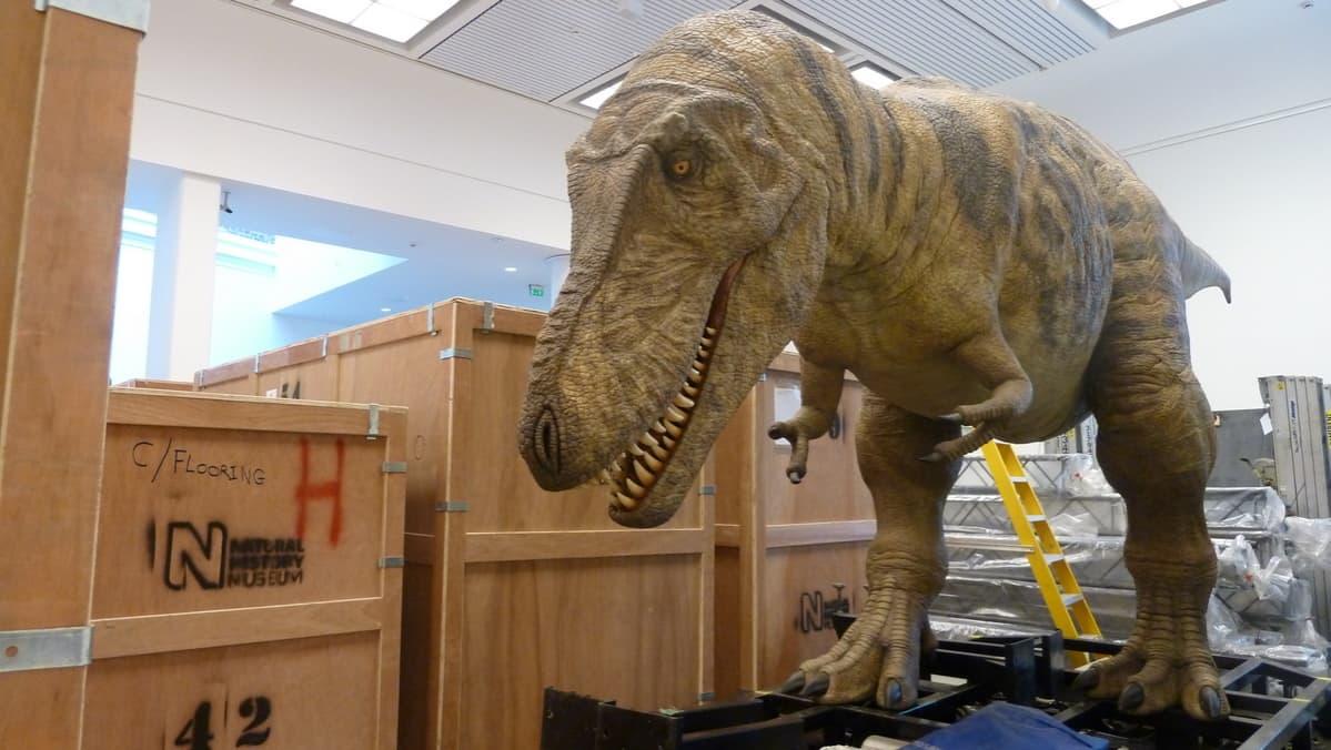 Dinosaurusnäyttely; Oulun dinosaurusnäyttely; The Age of the Dinosaur
