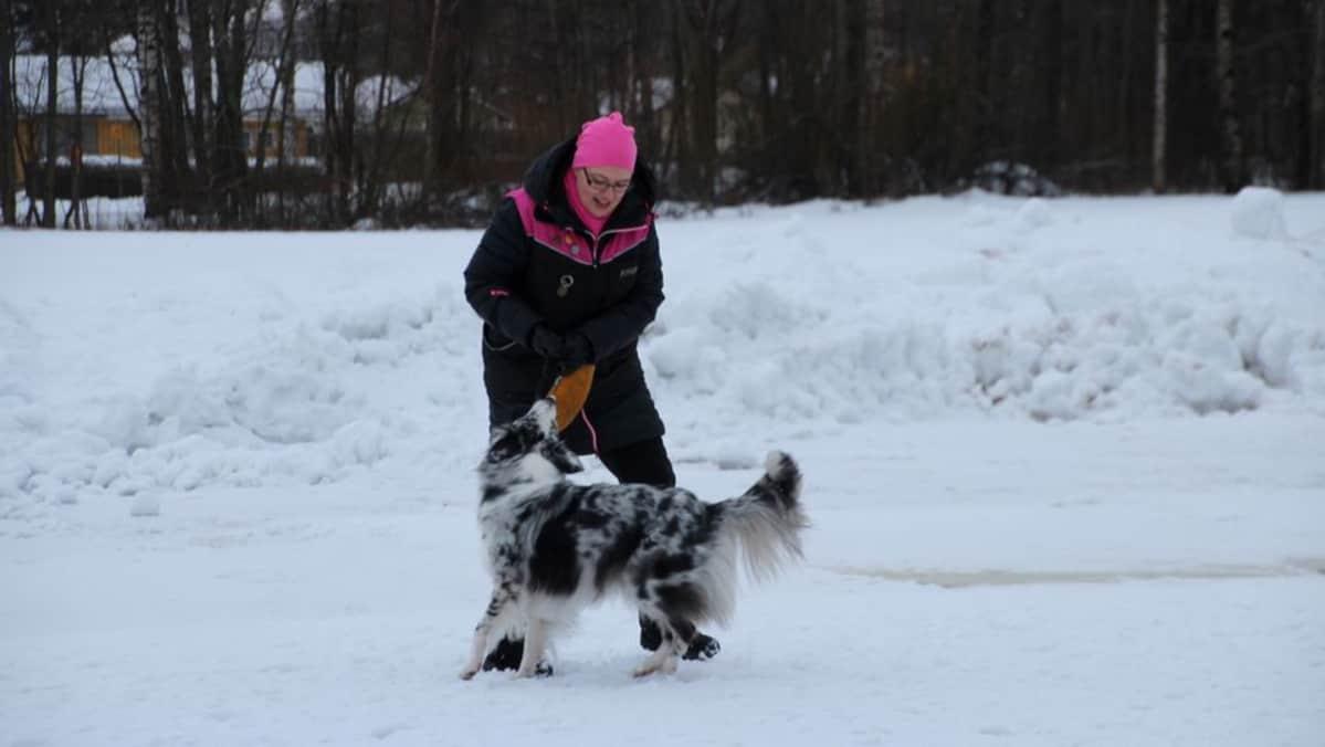 Yhteinen harrastus käy kuntoilusta niin koiralle kuin omistajallekin.