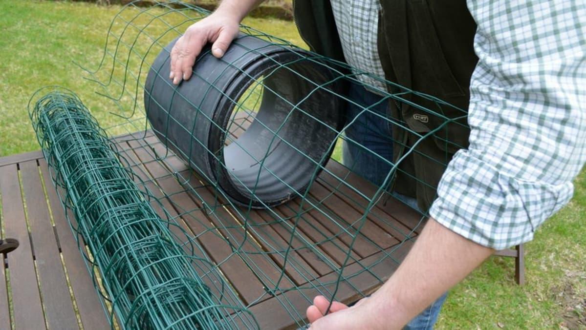 Sorsanpesän rakentamista puutarhaverkosta.