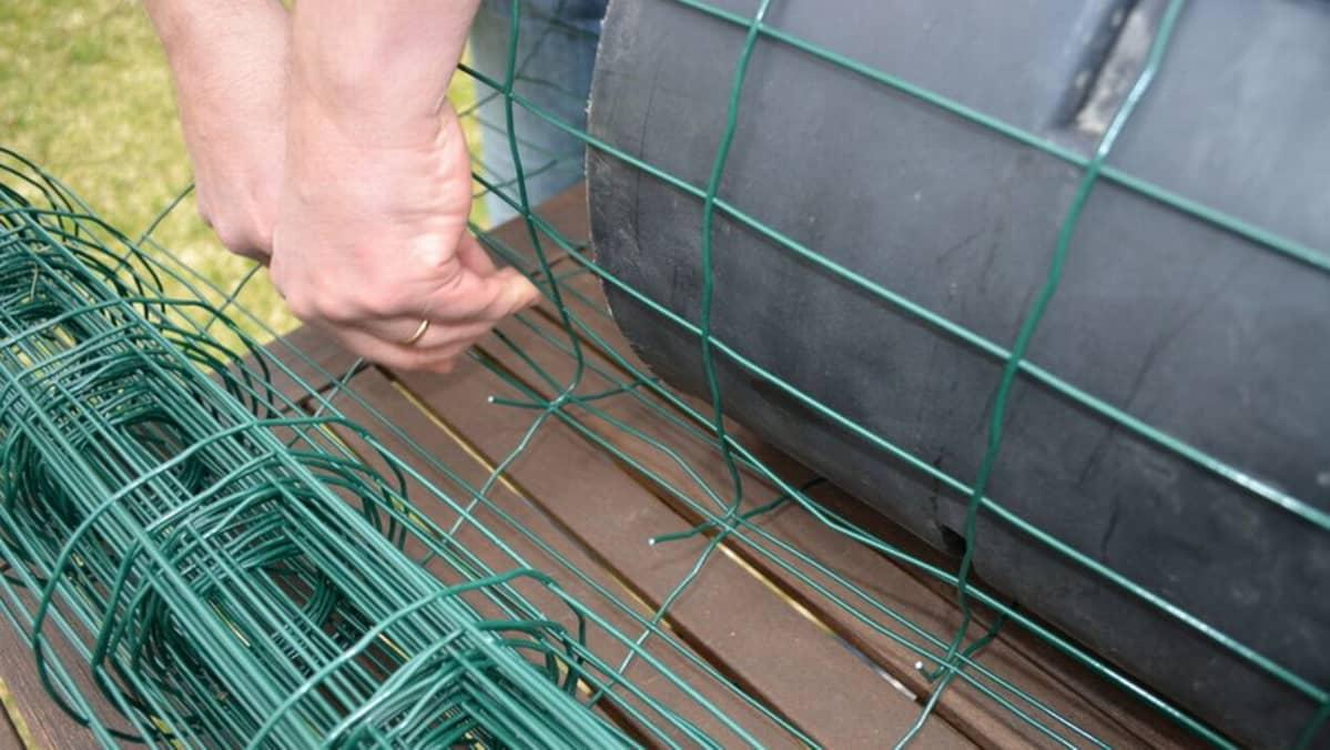 Sorsanpesää rakennetaan puutarha-aidasta.