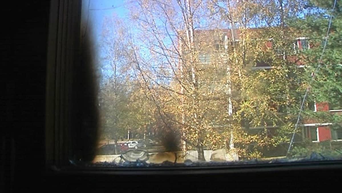 Palojälkiä ikkunassa