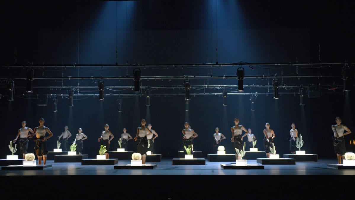 Dortmuntin baletti esittää Cacti-teosta.