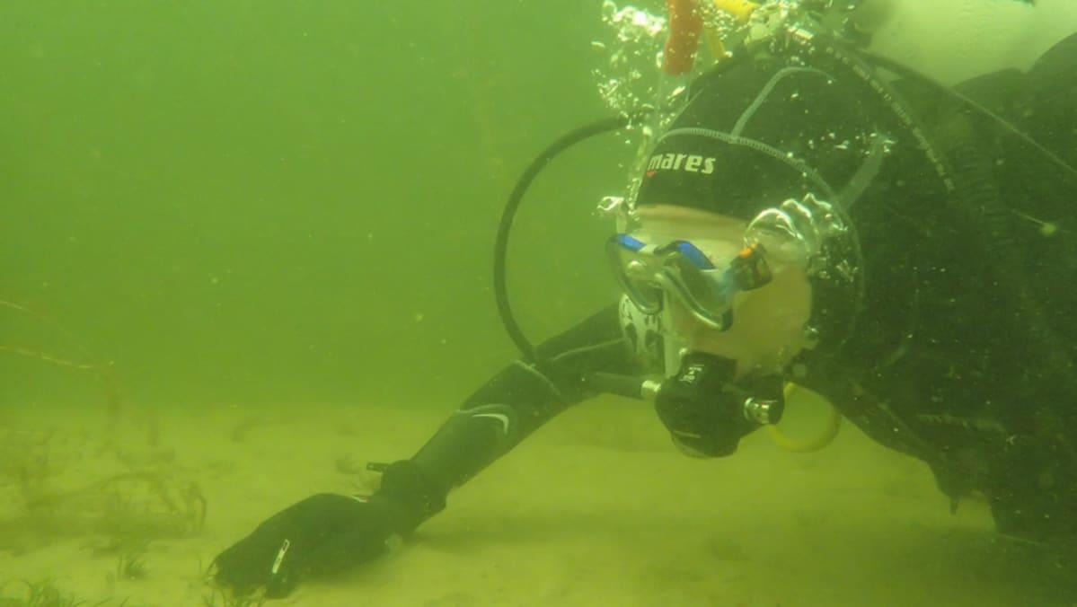Sukeltaja Puruvedessä.