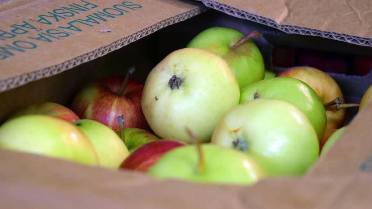 Omenoita pahvilaatikossa